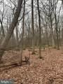 Pump Run Trail - Photo 5