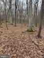 Pump Run Trail - Photo 6