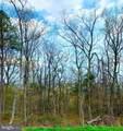 LOT 1 Dogwood Trail - Photo 1