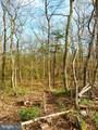 LOT 1 Dogwood Trail - Photo 2