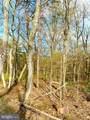 LOT 1 Dogwood Trail - Photo 3