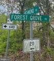 Forest Grove Rd - Photo 3