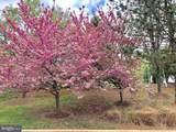 6402 Springview Place - Photo 1