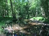 15141 Trap Pond Road - Photo 41