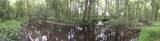 15141 Trap Pond Road - Photo 45