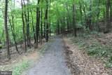 Lot 16 Oak Leaf Ct - Photo 14