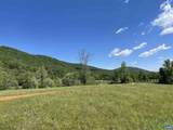 Lot 22 Dudley Mountain Rd Road - Photo 3