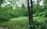 711 Cedar Knoll Road - Photo 39