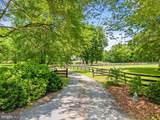 11612 Putnams Mill Road - Photo 3