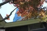36161 Tarpon Drive - Photo 12