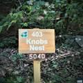 403 Devils Knob Loop - Photo 59