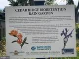 1071 Cedar Ridge Court - Photo 11