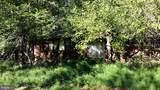 14173 Rehobeth Church Road - Photo 18