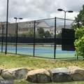 42460 Hollyhock Terrace - Photo 31