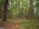 10 Hedge Apple Lane - Photo 37