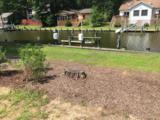 31 Duck Cove Circle - Photo 1