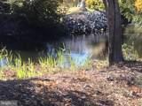 38025 Water Walk Way - Photo 5