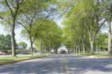 1000 New Holland Avenue - Photo 8