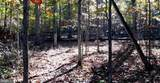 Wooded Lane - Photo 24