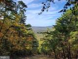 Bear Garden Trail - Photo 1