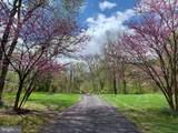 38283 Hughesville Road - Photo 64