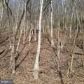 Rt.555 Combo Lots 4B Driftwood - Photo 3