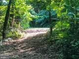 264 Sandy Ridge Road - Photo 1