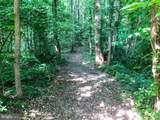 264 Sandy Ridge Road - Photo 2