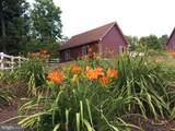 676 Timberland Manor Drive - Photo 54