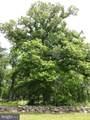 16623 Tree Crops Lane - Photo 22