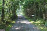 311 White Deer Drive - Photo 3