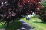 15241 Royal Crest Drive - Photo 70