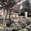1830 Fountain Drive - Photo 2