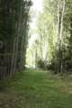 West Oc Farm 50 Route - Photo 21