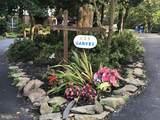 635 Santa Maria Lane - Photo 12