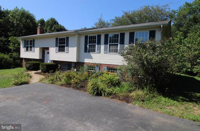 10894 Martingale Court, FREDERICK, MD 21701 (#MDFR250178) :: Network Realty Group