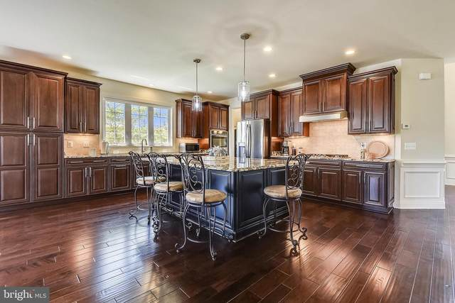 22602 Pinkhorn Way, ASHBURN, VA 20148 (#VALO414296) :: Debbie Dogrul Associates - Long and Foster Real Estate