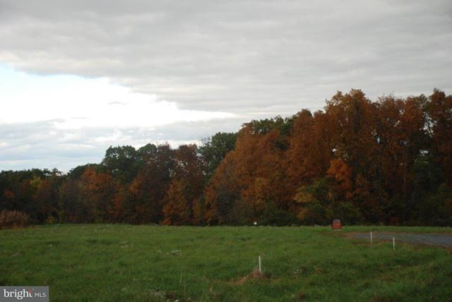 Lot 11 Airyview Road, SHERMANS DALE, PA 17090 (#1002663327) :: The Joy Daniels Real Estate Group