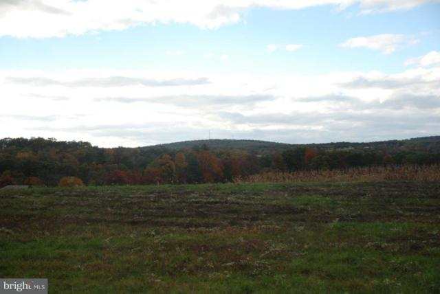 Lot 9 Airyview Road, SHERMANS DALE, PA 17090 (#1002663337) :: The Joy Daniels Real Estate Group