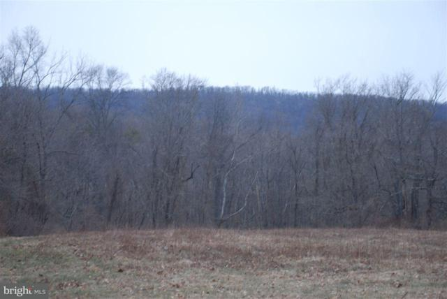 Lot 12 Airyview Road, SHERMANS DALE, PA 17090 (#1002664369) :: The Joy Daniels Real Estate Group