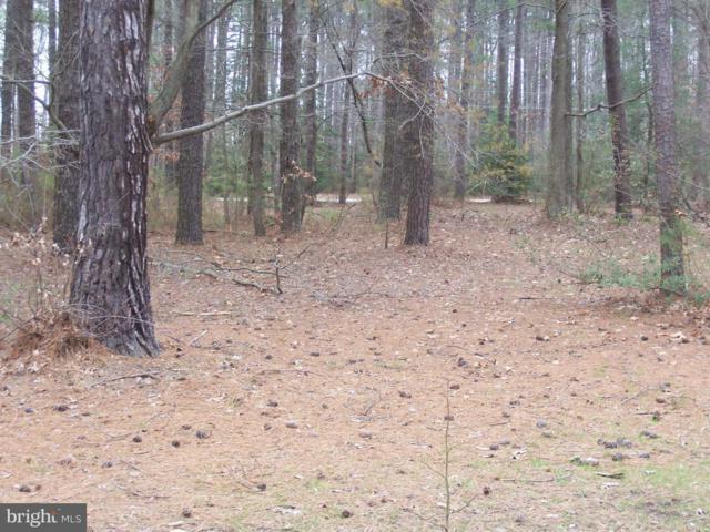 Erica Drive, MONTROSS, VA 22520 (#1000025981) :: Green Tree Realty