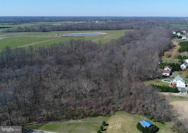 Goldfinch Lane, CENTREVILLE, MD 21617 (#1000038489) :: The Gus Anthony Team