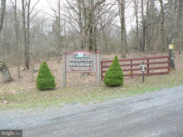 LOT 28 Mt Meadows Lakeside, MOUNT STORM, WV 26739 (#1000040241) :: Blue Key Real Estate Sales Team