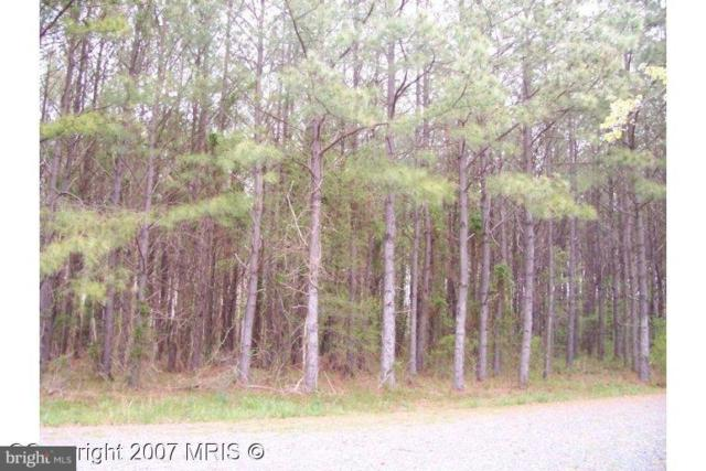 Buck Rub Lot #1 Road, TRAPPE, MD 21673 (#1000048561) :: Great Falls Great Homes