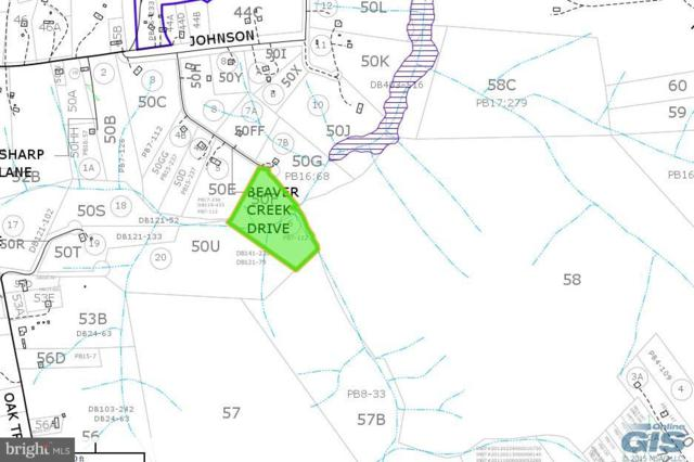 Lot 50F Beaver Creek Dr, KING GEORGE, VA 22485 (#1000050581) :: ExecuHome Realty