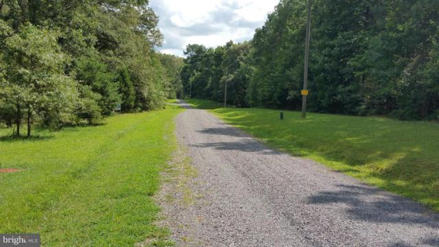 Lot 2 Attopin Lookout Road, KING GEORGE, VA 22485 (#1000050585) :: Colgan Real Estate