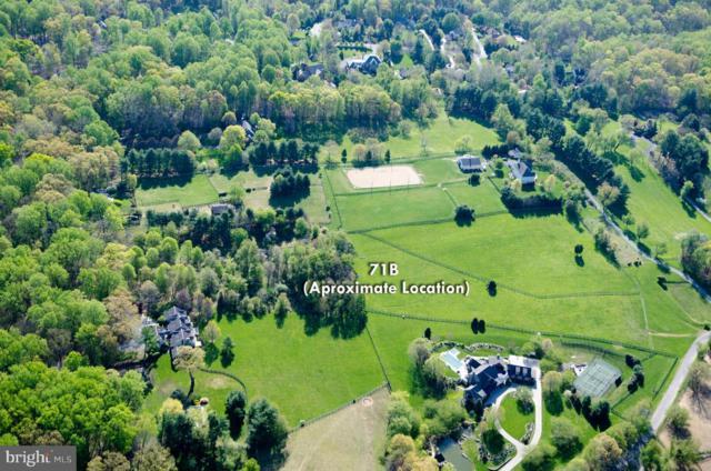 119 Commonage Drive, GREAT FALLS, VA 22066 (#1000058743) :: Great Falls Great Homes