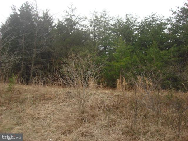 8620 Ox Road S, FAIRFAX STATION, VA 22039 (#1000058845) :: Colgan Real Estate