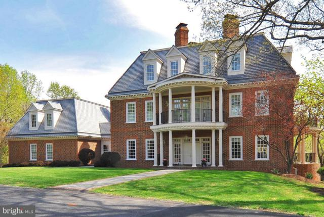 11206 Richland Grove Drive, GREAT FALLS, VA 22066 (#1000058941) :: Colgan Real Estate