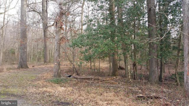 Delphinium Trail, LORTON, VA 22079 (#1000059535) :: Bob Lucido Team of Keller Williams Integrity